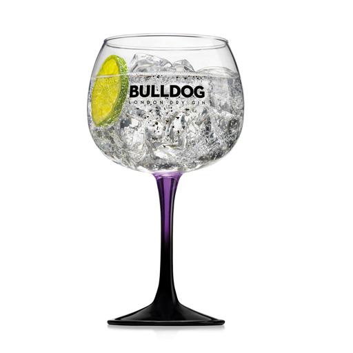 Gintonic Bulldog